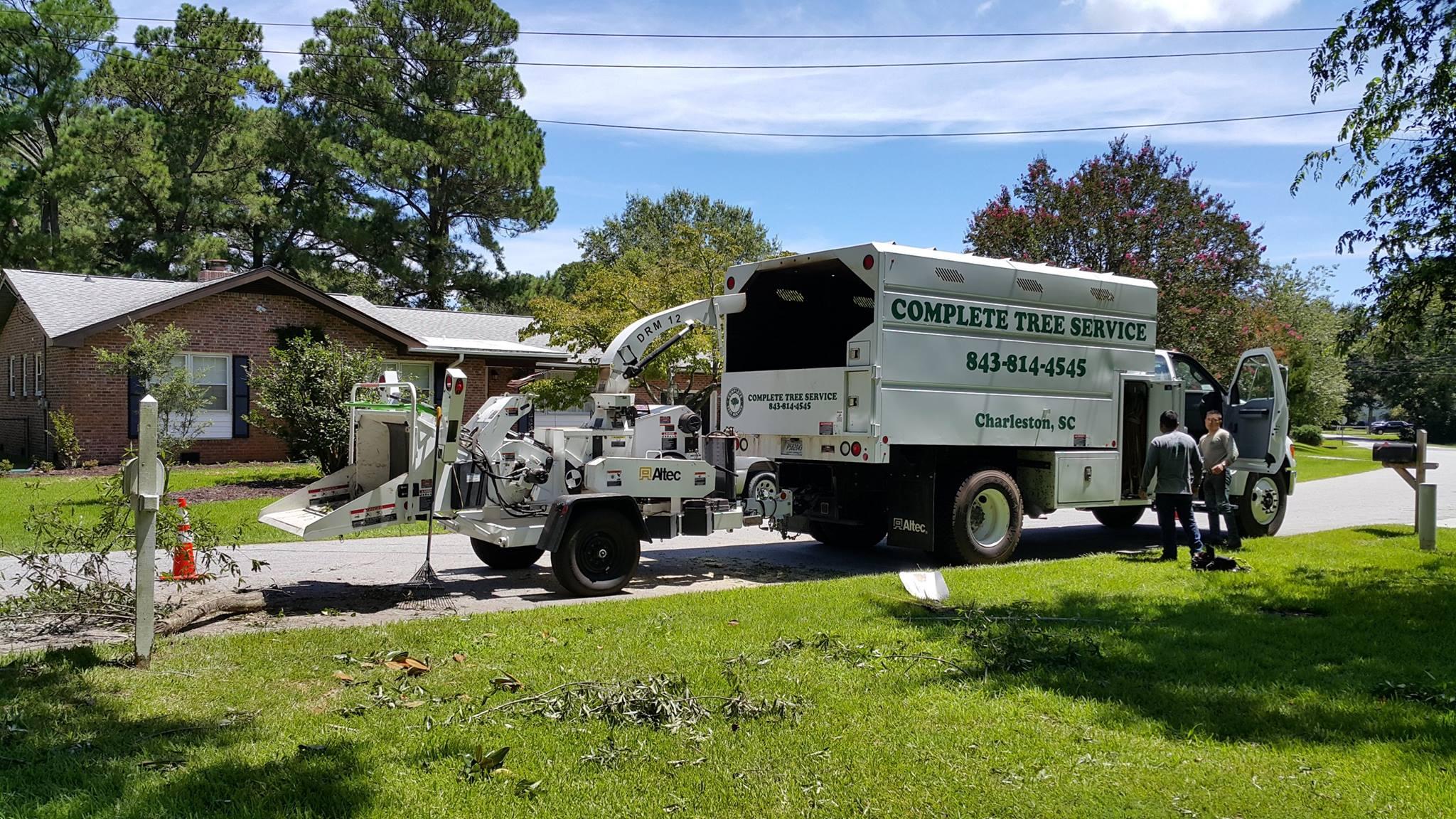 Tree Service in Charleston